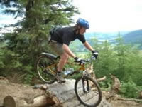 7Stanes mountain biking